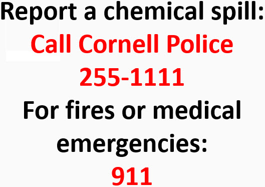 Report a chemical spill: Call Cornell Police 255-1111 For fires or medical emergencies: 911