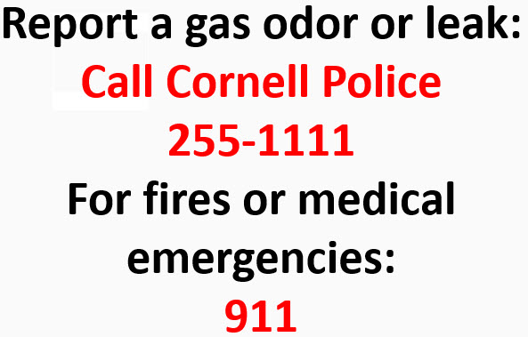 Report a gas odor or leak: Call Cornell Police 255-1111 For fires or medical emergencies: 911