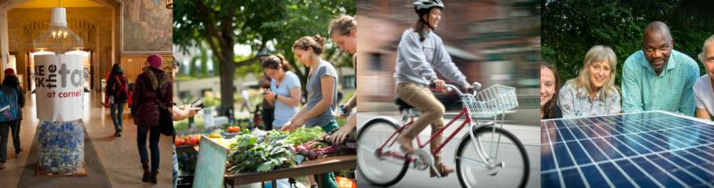 Cornell Sustainability Photo Melange